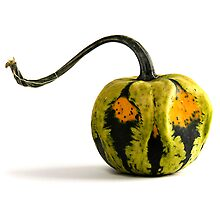 Jack the Gourd  by BonnieJames