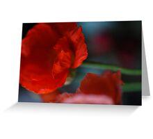 Red poppy Greeting Card