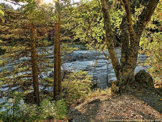 Glacier Autumn 2 (MacDonald Creek) by rocamiadesign