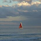 Out for a Sail by timthetraveller