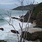 Byron Bay Beach by timthetraveller