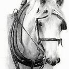 Work Horse by Michael Beckett