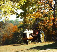 ANOTHER OLD TRACTOR by Pauline Evans