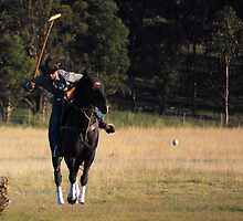 Polo the sport of....Cowboys!!! by suziimages