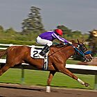 A Jockey & His Horse - the Final Burst of Speed Before the Finish Line by Buckwhite