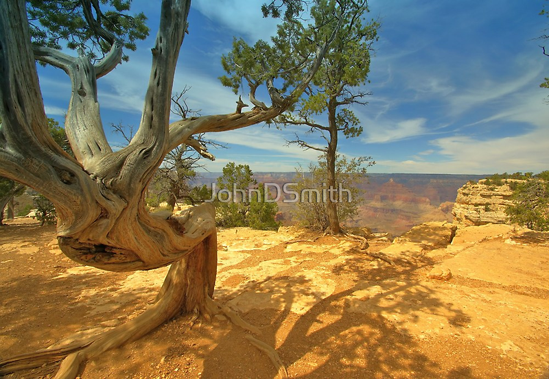 Nature`s Art by JohnDSmith