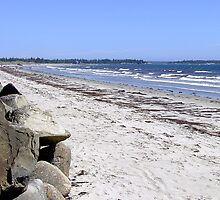 Crescent Beach, North-East by George Cousins