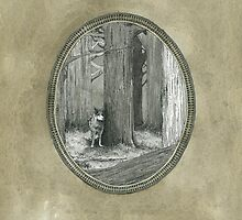 The Big Bad Wolf Lost In The Woods by Paul Compton
