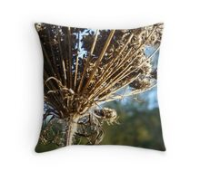 october queen anne's lace Throw Pillow