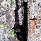 Cataract Gorge Rocks 1M by MyceanSage