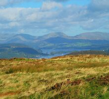 Overlooking Windermere by trish725