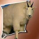 Mountain Sheep OOB by MaeBelle