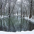 Winter Snow an reflections, White river Arkansas by David  Hughes
