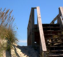 To the Beach by Sandy Woolard