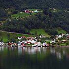 A Village. by Lee d'Entremont