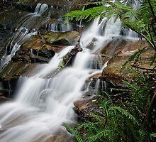 Leura Cascades #2 by VanceRoyce