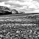Sandside Black and White  by lendale