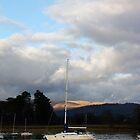 Sail Boat by Stefan D