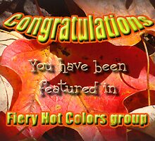 fiery hot colors challenge banner by vigor