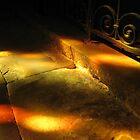 Half Light by Sukhwinder Flora