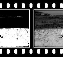 Film roll of a relaxing moment by the ocean by Kym Slark