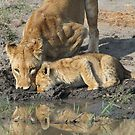 Mother and child drinking together(A little more and then we have to leave!) by jozi1