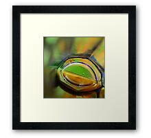 Through A Glass Brightly Framed Print