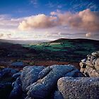 Hayne Down - Dartmoor National Park, Devon by Craig Joiner