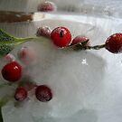 Holly berries and that special Christmas light by  Pauline Wherrell