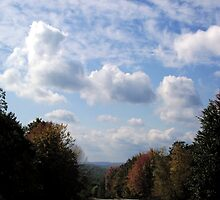 Leaving Harriman State Park by Sinclere