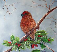 House Finch In Winter by Loretta Luglio