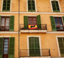Windows in Palma by Esther  Moliné