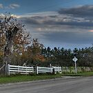 White Fence by Michael Kelly
