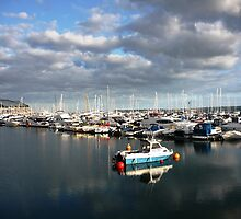 Torquay harbour by Stephanie Owen