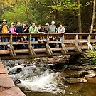 Rickett's Glen - Welcome PA Group by Mark Van Scyoc
