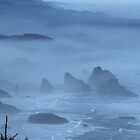 Wonders Of The Oregon Coast by OneRudeDawg