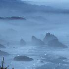 Wonders Of The Oregon Coast by OneRudeDawg