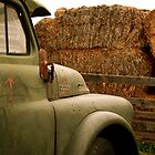 Old Dodge by Roxanne Persson