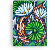 Coy Carp Canvas Print