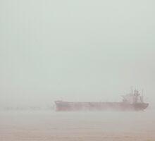 Life by the Parana River... by Denis Marsili - DDTK