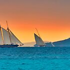 Regattas under  storm by southmind