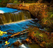 Walpole Town Forest III - Little water fall by LudaNayvelt
