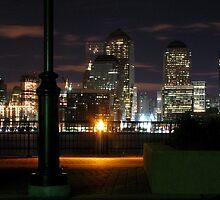 City Lights by Scott  Hafer