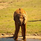 Thirsty! by vasu