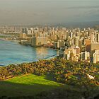 Hiking Diamond Head  by Cheryl  Lunde