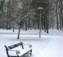 Snowy scene in Utrecht by Stephanie Owen