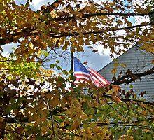 Flag - Fall - Fallen Veterans by Jack McCabe