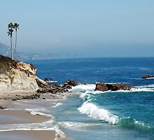 Southern California Coast  by Karen Mezzano
