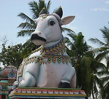 Nandhi-The Bull by gaykrish