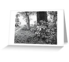 Into The Woods - Inkt Pen Drawing Greeting Card